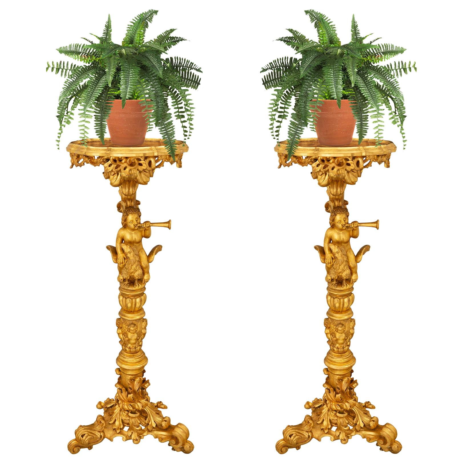 Pair of Italian Early 19th Century Baroque Style Giltwood Pedestals