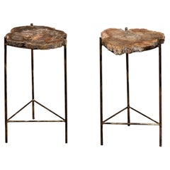 Pair of Italian End Tables with Petrified Wood Tops
