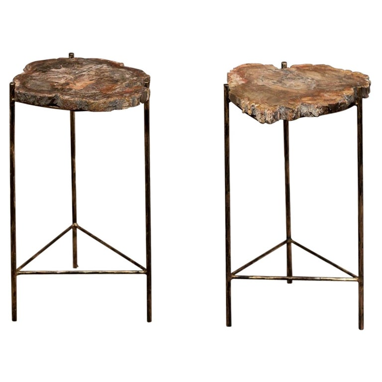 Pair of Italian End Tables with Petrified Wood Tops For Sale