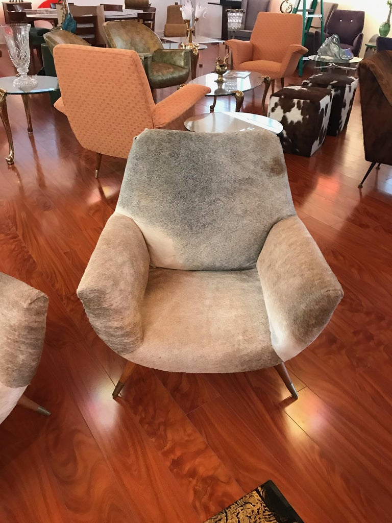 Mid-20th Century Pair of Italian Mid-Century Modern Club Chairs Covered in Cowhide For Sale
