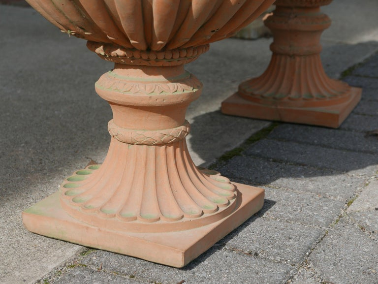 Adam Style Pair of Italian Neoclassical Style Terracotta Planters For Sale