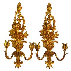 Pair of Italian Palladio Carved Gilt Wood Louis XV Style Two-Arm Wall Sconces