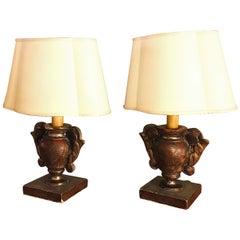 Pair of Italian Table Lamps 19th Century Pair of Portapalme Altar Vases