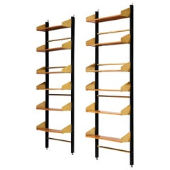 Pair of Italian Wall Units by Feal in Brass and Teak