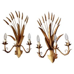 Pair of Italian Wheat Form Sconce