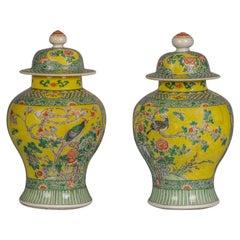 Pair of Japanese Famille Verte Covered Vases, circa 1860