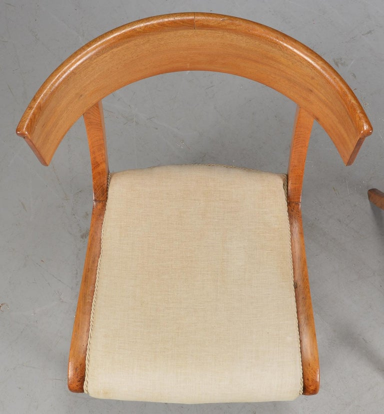19th Century Pair of Klismo Chairs For Sale