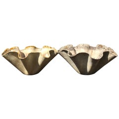 Pair of Large Biomorphic Planters by Willy Guhl