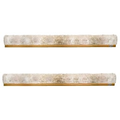 Pair of Large Blown Murano Glass and Brass Wall Lights by Hillebrand