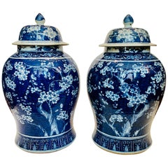 Pair of Large Blue and White Chinese Porcelain Jars Antique Qing Dynasty