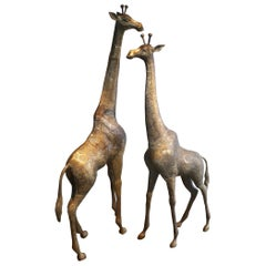 Pair of Large Brass Giraffes
