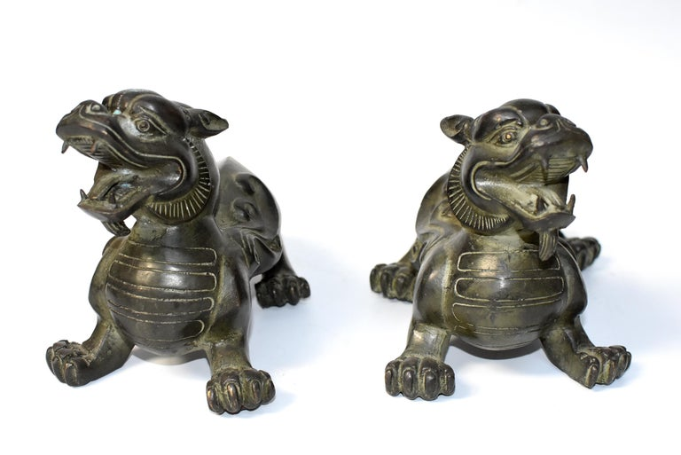A pair of beautiful bronze pixiu lions. These are mythical beasts believed to bring and keep tremendous wealth. Fine craftsmanship and vivid expressions. Detailed works throughout. This particular pair has interesting turtle shells, symbolizing
