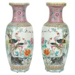 Pair of Large Chinese Export Pink Vases with Peacocks