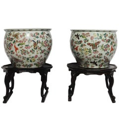 Pair of Large Chinese Jardinières with Butterflies and Flowers