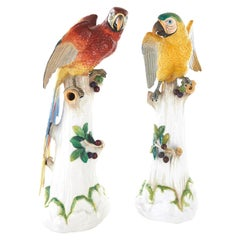 Pair of Large Dresden Porcelain Parrots
