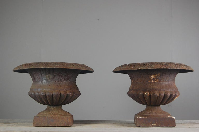 Pair of Large Early 20th Century Cast Iron Urns For Sale 3