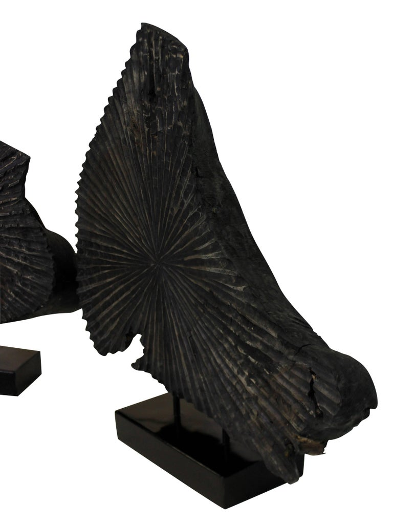 A pair of large sliced tree trunk sculptures, mounted on black lacquered stands.