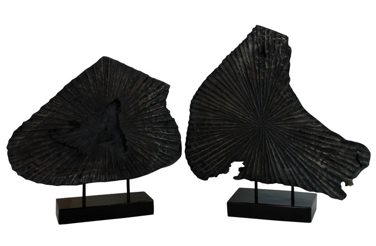 Fruitwood Pair of Large Ebonized Tree Trunk Sculptures For Sale
