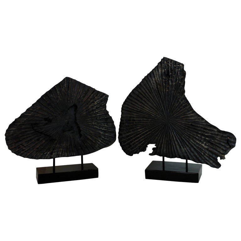 Pair of Large Ebonized Tree Trunk Sculptures For Sale