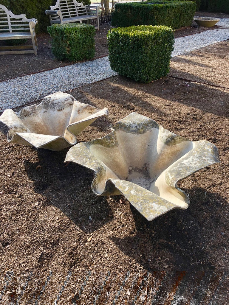 Mid-Century Modern Pair of Large Elephant Ear Planters Designed by Willy Guhl For Sale
