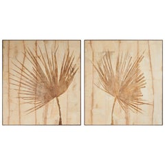 Pair of Large Fossilized Palm Fronds