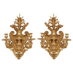 Pair of Large Gilt Bronze Sconces in the Régence Style
