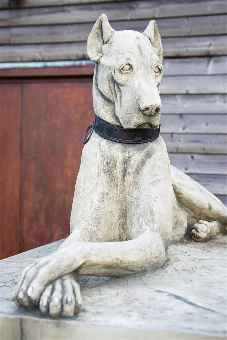 English Pair of Large Hounds on Plinths For Sale