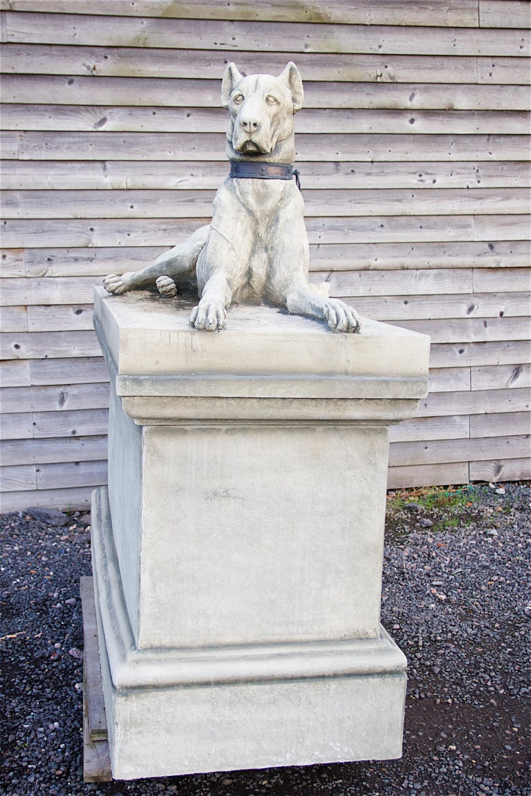 Pair of Large Hounds on Plinths For Sale 1