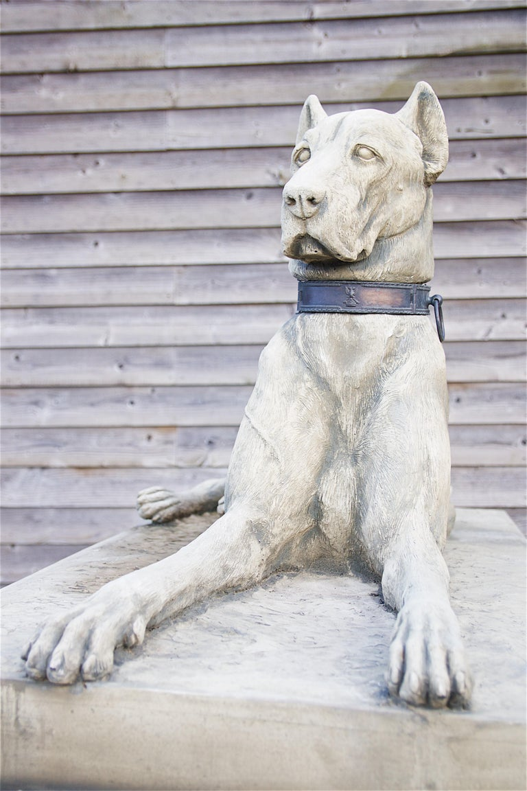 Pair of Large Hounds on Plinths For Sale 2