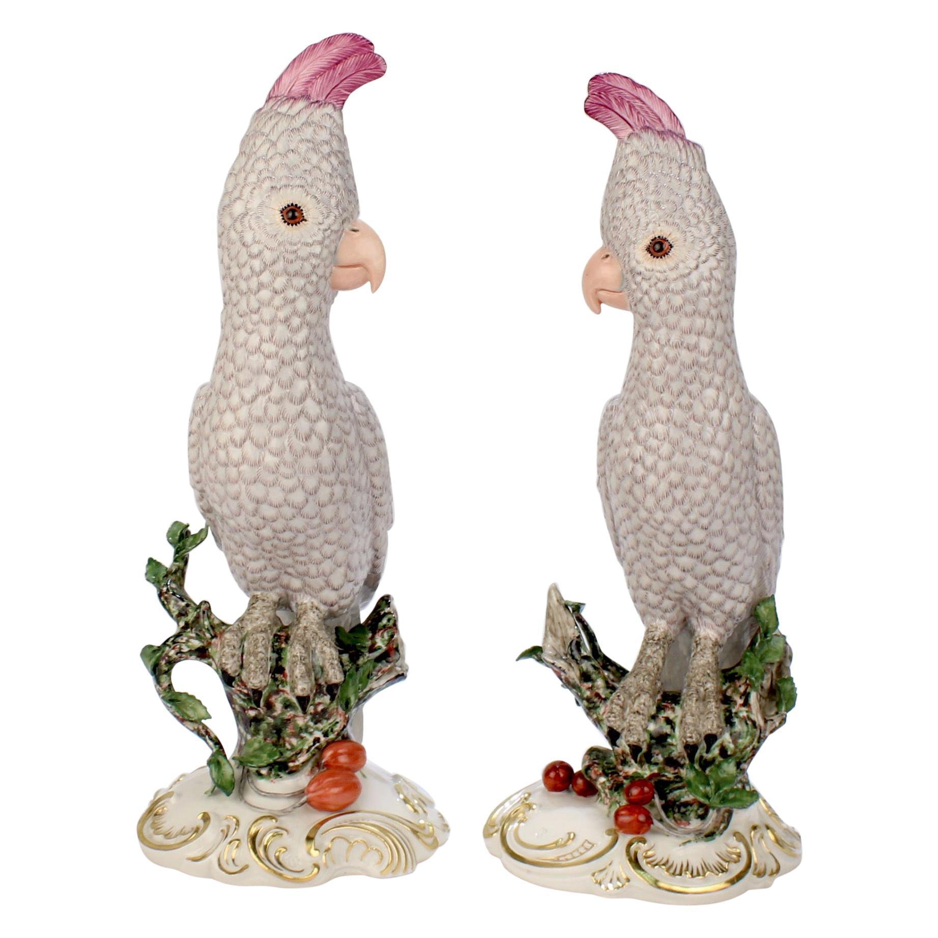 Pair of Large Nymphenburg Porcelain Cockatoo or Kakadu Figurines