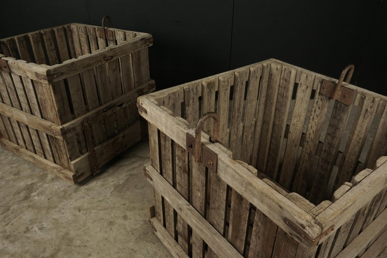 European Large Pair of Oak Crates from France, circa 1940 For Sale