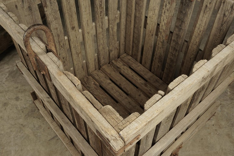 Large Pair of Oak Crates from France, circa 1940 For Sale 2