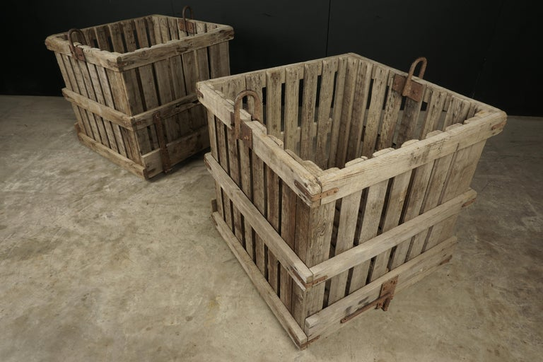 Large Pair of Oak Crates from France, circa 1940 For Sale 3
