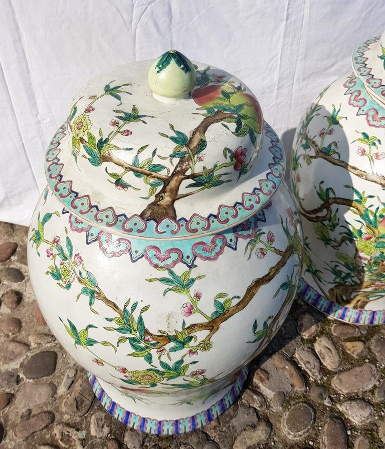 Pair of chinese potiches in glazed painted porcelain, China 20th century vases For Sale 9