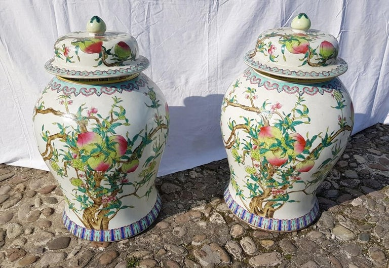 In glazed porcelain. Painted with vegetable decoration in lively polychrome on a white background.