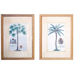 Pair of Large Tropical Palm Tree Prints