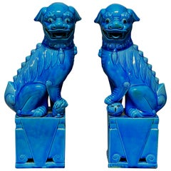 Pair of Large Turquoise Glazed Foo Dogs
