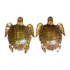 Pair of Large Unusual Turtle Shaped Nacre Faux Tortoiseshell Wall Sconces