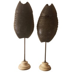 Pair of Late 19th Century Armadillo Shells on Stands