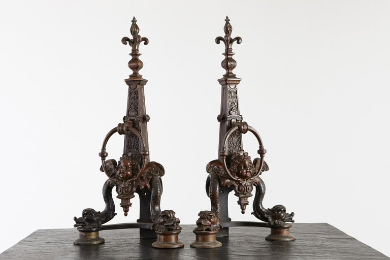 Pair of Late 19th Century French Baroque Bronze Andirons with Dolphin and Putti For Sale 2
