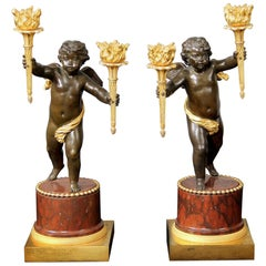 Pair of Late 19th Century Gilt and Patinated Bronze Two Light Candelabra