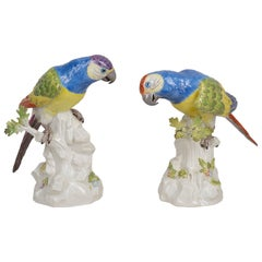 Pair of Late 19th Century Meissen Porcelain Parrots