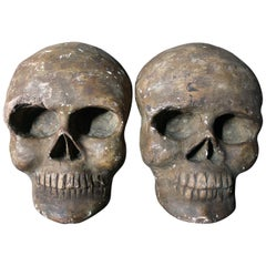 Pair of Late 19th Century Memento Mori Sculpted and Painted Plaster Skulls