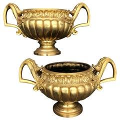 Pair of Late 19th Century Ormolu Gilt Urns or Planters