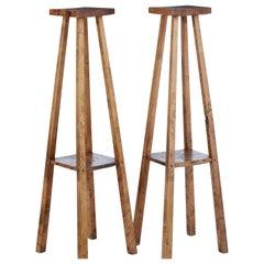 Pair of Late 19th Century Rustic Oak Pedestal Stands