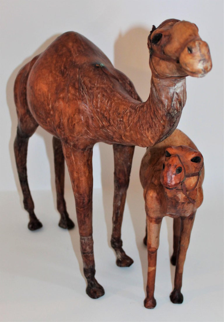 This fun pair of leather full body camels are in good condition. There is a tall large camel.