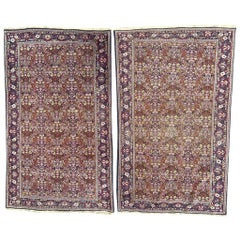 Pair of Little Indian Punjab Rugs