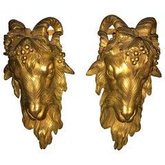 Pair of Louis XV Gilded Bronze Sconces, Ram Heads, Têtes de Béliers, Imposing