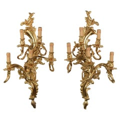Pair of Louis XV Sconces in Gilt Bronze with Five Lights Mid-20th Century