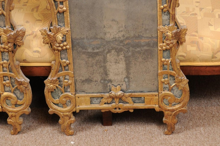 19th Century Pair of Louis XV Style French Giltwood Mirrors For Sale